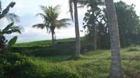 Beach front land at Tabanan, Bali, Indonesia