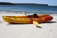 kayak for sale with paddles and backrest (velocity)