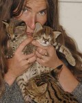 Serval and Savannah Kittens Available