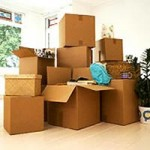 professional movers packers dubai 050 8853386